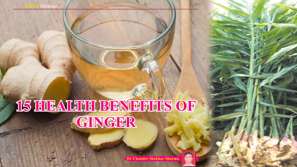 15 Health benefits of Ginger