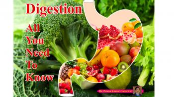 Digestion, all you need to know