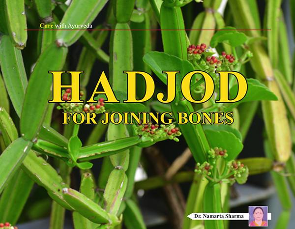 HADJOD for Joining bones