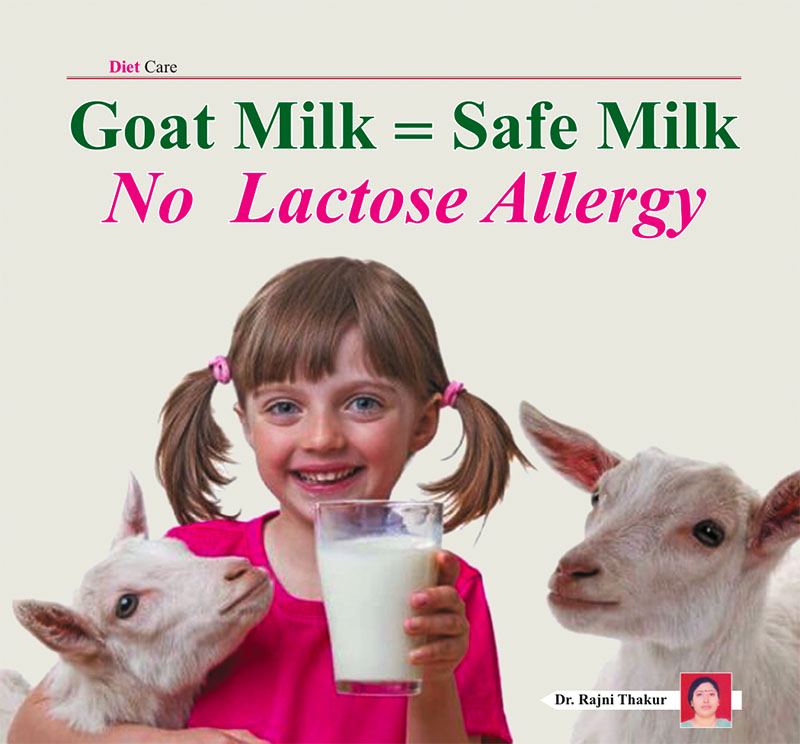 Goat Milk = Safe Milk , No  Lactose Allergy